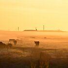A Misty Gathering by Howard Lorenz