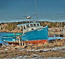 The Blue Lady by Roxane Bay