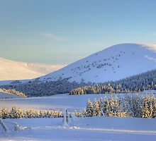 Winter Scene - Scottish Highlands by bigredt