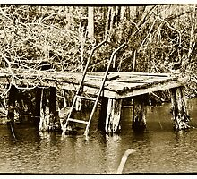 The Old Swimming Hole by Phillip M. Burrow