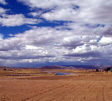 Fertile Land, Lake Titcaca, Peru by suellewellyn
