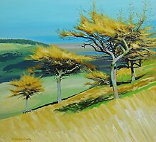 Three Trees by Graham Clark