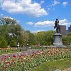 Boston Public Garden by Lee d'Entremont