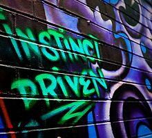 Instinct Driven by Luisa Cavallaro