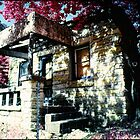 This Old House by Mike Lewis