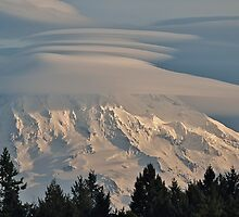 Mt. Rainier with Lenticular Clouds, Washington by Leigh Stone