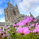 Christchurch Cathedral, Dublin by Nicholas Jermy