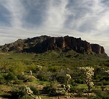 Superstition Mountain ~ Apache Trail, Arizona by Kimberly Chadwick