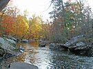 Unami Creek in Autumn - Green Lane, PA by MotherNature