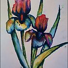 Iris by abstractbYmina