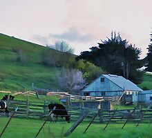 West Sonoma County California by janice fife