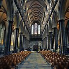 Salisbury Cathedral by Adam  Barstow