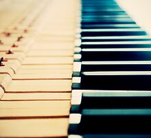 Piano Keyboard by Darius Narmontas