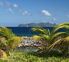Palm Saturday ~ Sandy Island, Carriacou by moor2sea