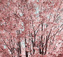 arbre de rêve v02 by Aimelle
