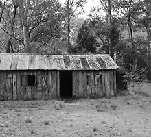 Mulligans Hut by MyPerspective