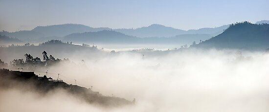 Nilgiris (Pano) by Vikram Franklin