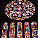 Chartres Rose Window by David Davies