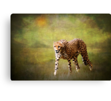 H is for........Hot Pursuit Canvas Print