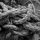 A bit of old rope by sarnia2