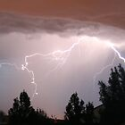 Colorado Lightning Storm #2 - Colorado Springs by Cari Graves