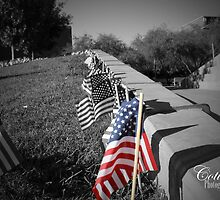 The American Flag by coti