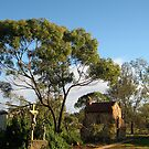 Father Hawes' Retreat with Crucifix and Virgin Mary, Morawa, Australia by Elizabeth Sheppard