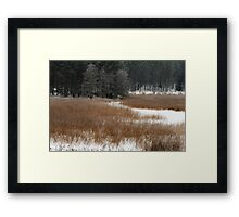 Winter colors in winter time Framed Print
