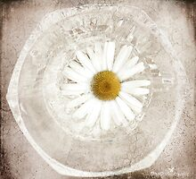 Daisy tile by Olga