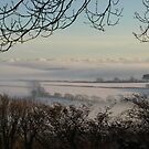 Foggy Fields - South Hams, Devon by moor2sea
