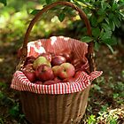 Little Red Riding Hood's Apples Basket by Hirondelles