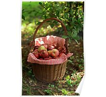 Little Red Riding Hood's Apples Basket Poster