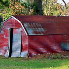 The Shed - Mottled tin building on rural road by Betty Northcutt