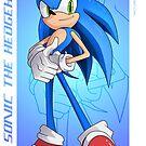 Sonic the Hedgehog - Sonic Adventure 2 Battle by Tom Skender