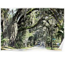 Floral City, Florida ~ View 2 Poster