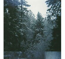 after the snow. Photographic Print