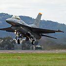 USAF 92-3897 General Dynamics F-16CJ Fighting Falcon by Cecily McCarthy