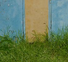 Bonaire Door by julieelucas