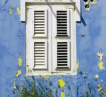 Bonaire - Shuttered Window by julieelucas