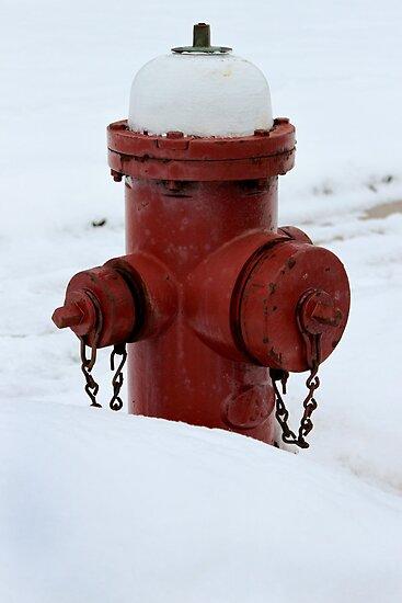 Winter Fire Hydrant by Nicholas Jermy