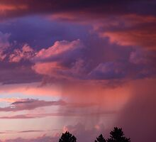 Pink Cotton Candy Sky by Marijane  Moyer