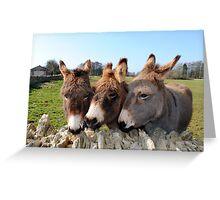 Tre migliori amici  Greeting Card