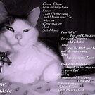 Meow! Namaste! by zoolou
