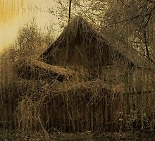 Old House by VallaV