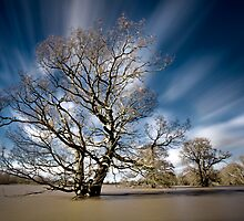 Flooded Again by Paul Whittingham