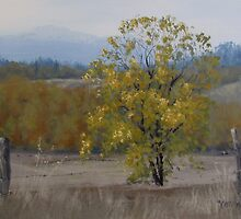 Shades of Autumn by Karen Ilari