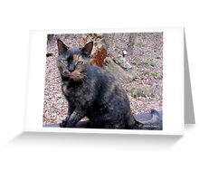 You GORGEOUS Cat You!!! Greeting Card