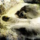 Baby Badger by Angela  Burman