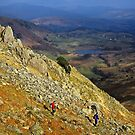 Views down to little Langdale by Shaun Whiteman