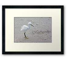 A Blustery Day Framed Print